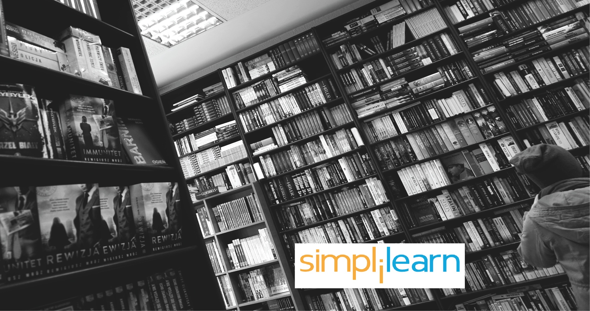 Data Science and Business Intelligence   IT Training